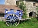 Domaine Le Sauzet (Camping-Chambres-Gites)