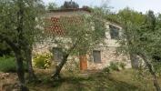 Boschi Casa en Fienile (Vakantiehuizen)